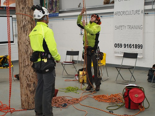June 6th Access Workshop with Tree Care Ireland | by Tree Care Ireland