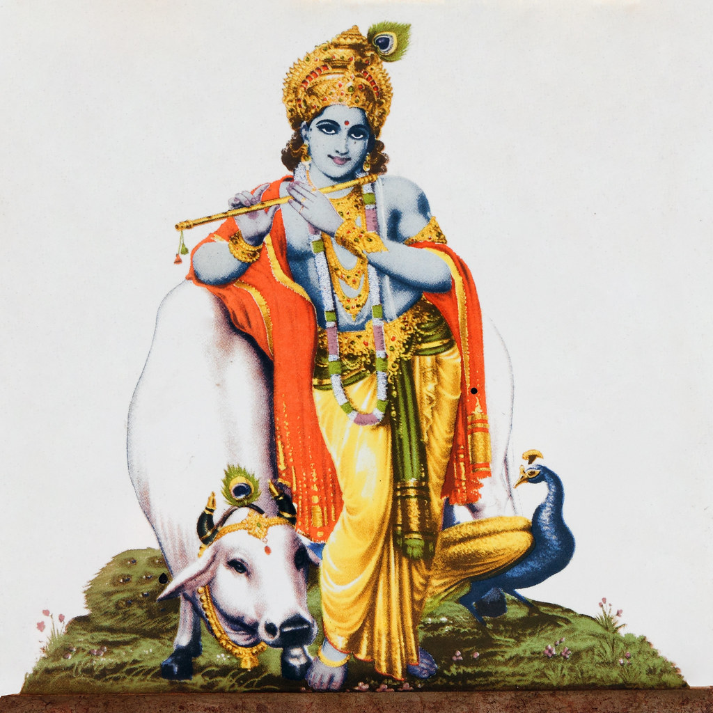 God Krishna With Cow God Krishna With Cow
