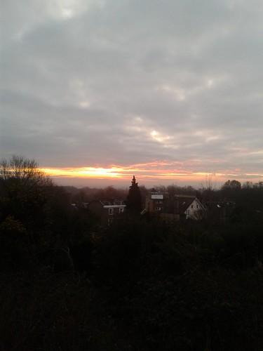 Morning Runs in the Heath