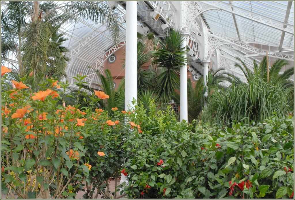 Le jardin d 39 hiver du people 39 s palace glasgow le for Le jardin 3d