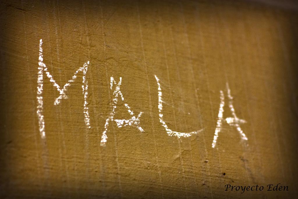 MaLa | La idea que no trata de convertirse en palabra es