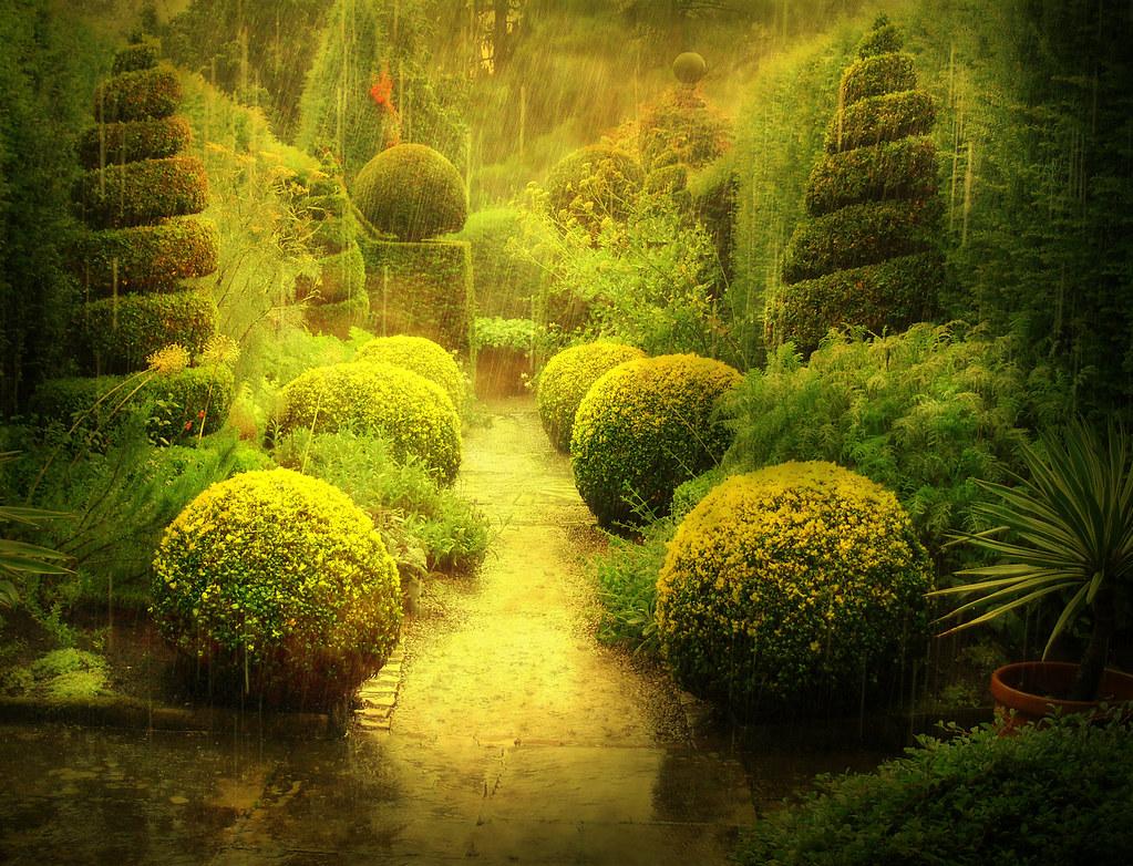 Wet Garden | Taken back in summer, it was just a ... on Landscaping Ideas For Wet Backyard id=18310