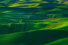 Palouse In The Spring | by kevin mcneal