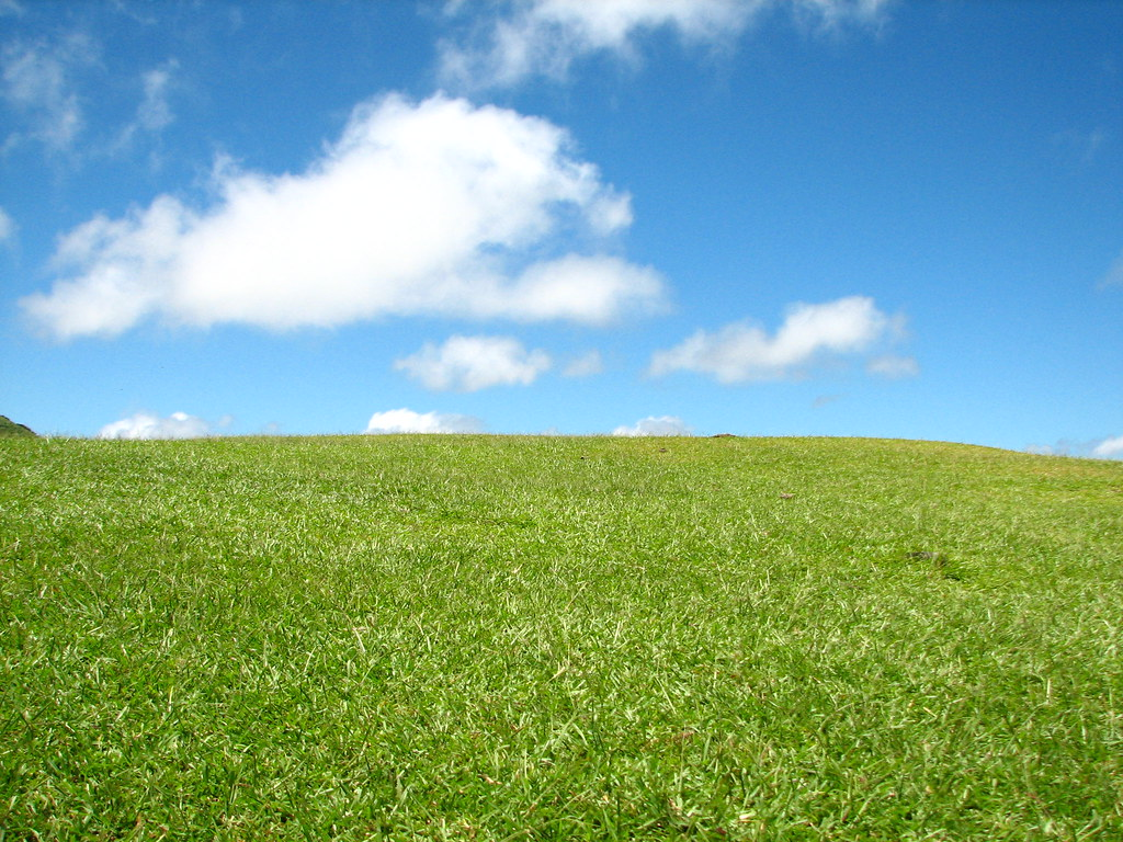 Grass And Sky on world map desktop