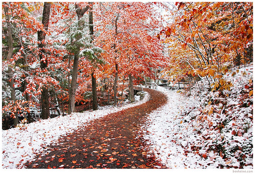 Two Seasons | by Ben Heine