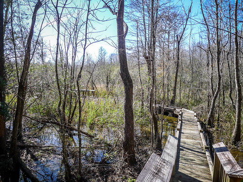 Old Santee Canal Park-115