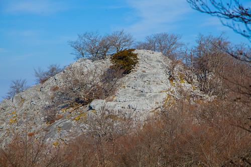 Parque Natural de Gorbeia  #DePaseoConLarri #Flickr -5394