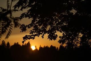 Oregon Sunset Oregon