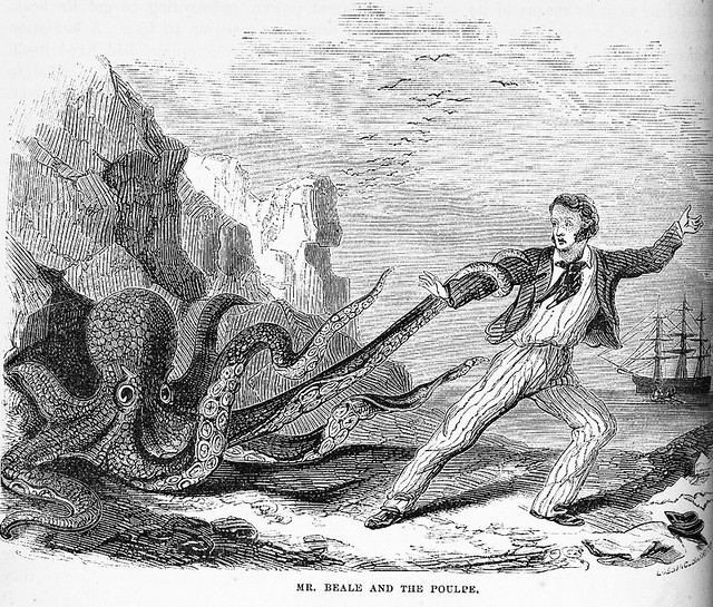 giant octopus attacks man - photo #6