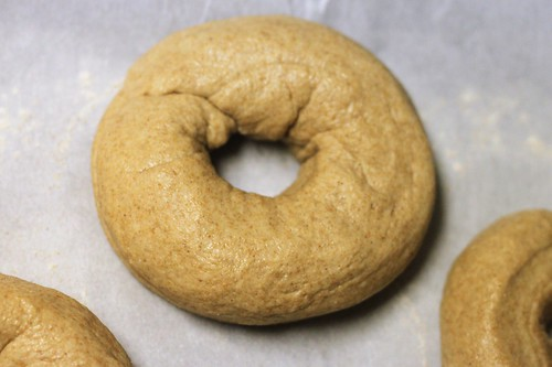 homemade whole wheat bagels | by Stacy Spensley