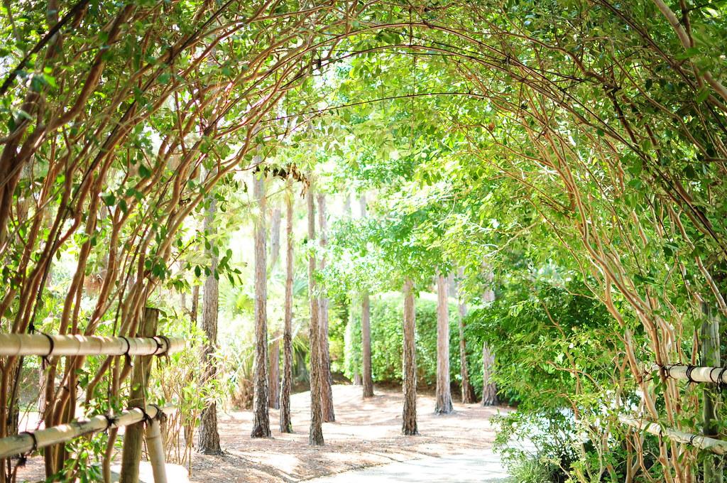 Morikami Gardens Dan Flickr