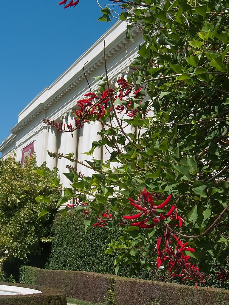 Entrance To The Libary At Huntington Gardens Pasadena Cali