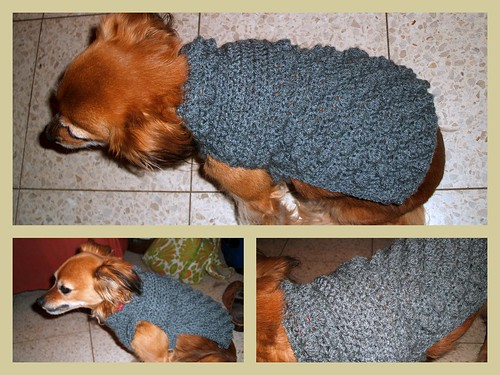 Dog Sweater Knitting Pattern For Beginners : Crochet dog sweater Pattern mysavannahcottage.wordpress.co? cats or dog ...