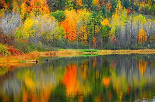 Reflexion Autumn Finger Lakes ! | by Jeny's flickr page