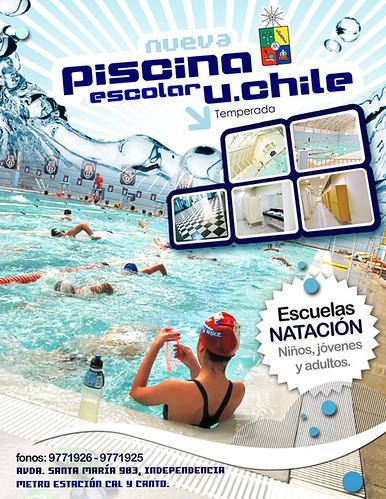 Cursos piscina afiche piscina cursos luis felipe for Curso piscinas