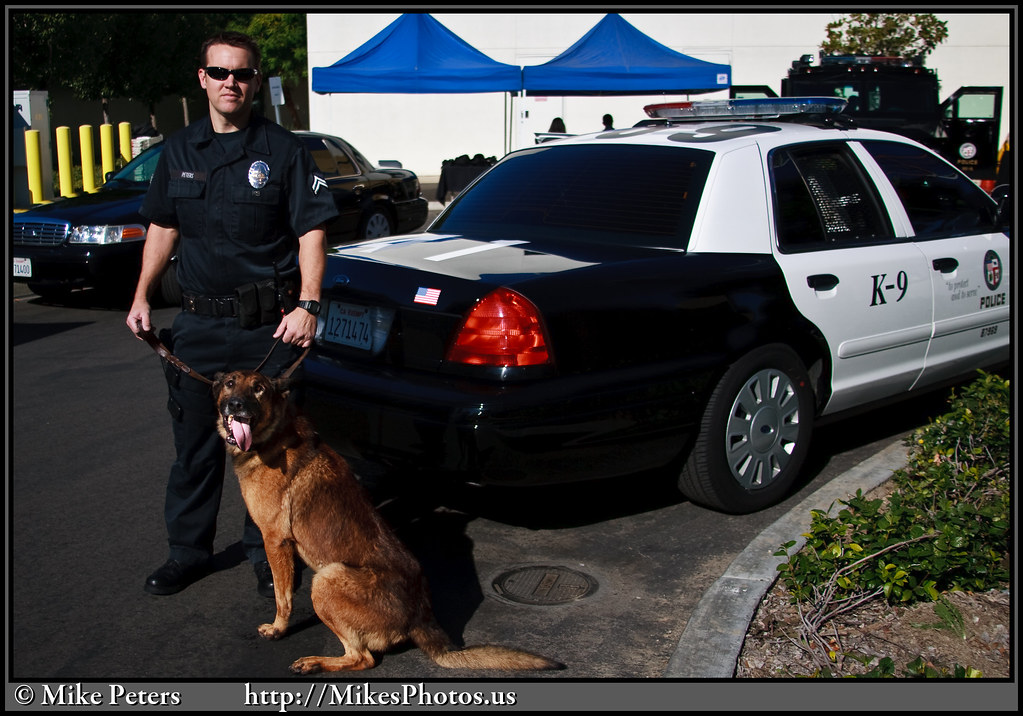 Officer And Dog Picture