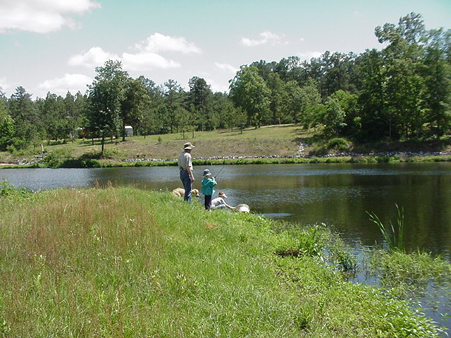 Alabama Fishing In A Pond In White City Alabama With