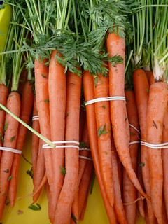 Carrots from H-W Farms 10/17/09 | by swampkitty