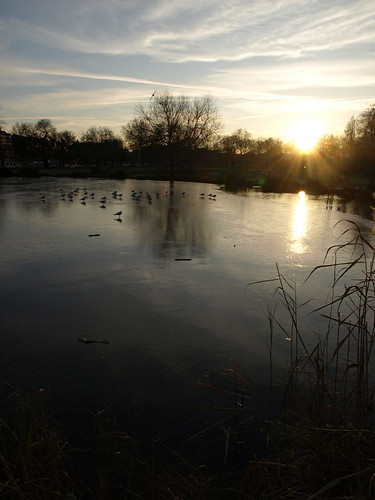 Frozen Clapham Common pond | by internets_dairy