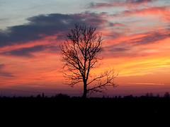 Cielo dipinto  un po vero un po finto  David Denicolò  Flickr