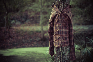 Flannel for trees | by Colin H.