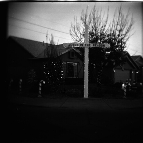 holga | by Zack Rosebrugh