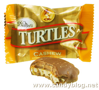 Cashew Turtles | by cybele-