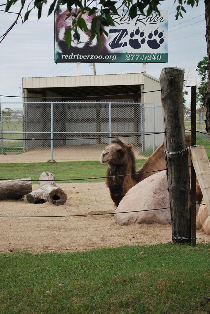 Red River Zoo In Fargo Nd Fargo Moorhead Cvb Flickr