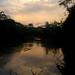 Sunset on Rio Tiputini