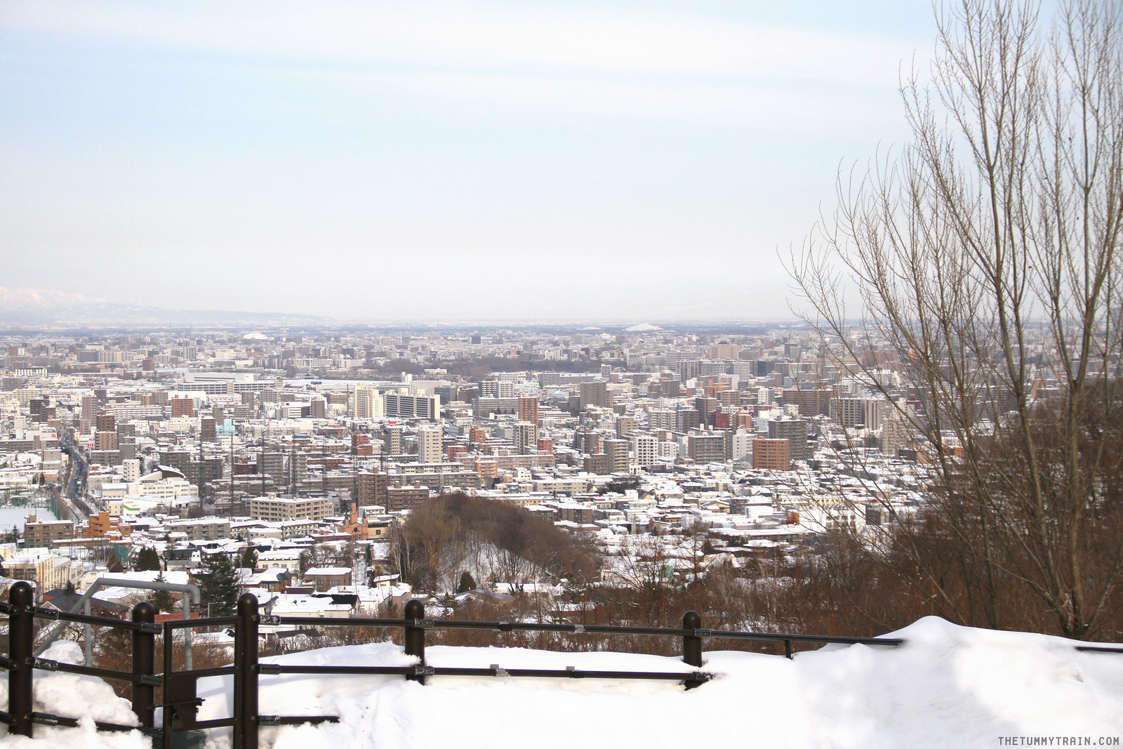 32073941684 71548dad66 h - Sapporo Snow And Smile: 8 Unforgettable Winter Experiences in Sapporo City