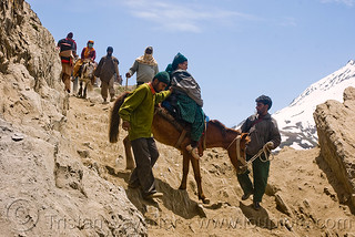 DSC13292 - Ponies and pilgrims on the trail - Amarnath Yatra (pilgrimage) - Kashmir | by loupiote (Old Skool) pro