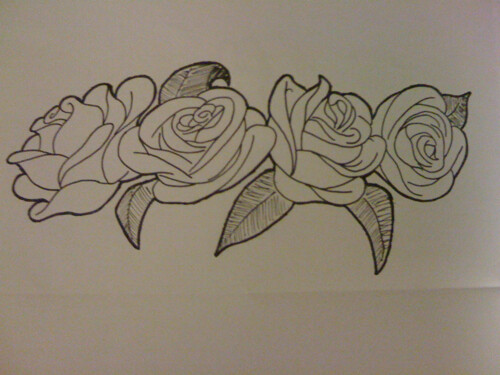 Line Drawing Of Rose Plant : Drawing beautiful black rose flower blossom stock illustration