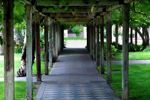 arbor walkway