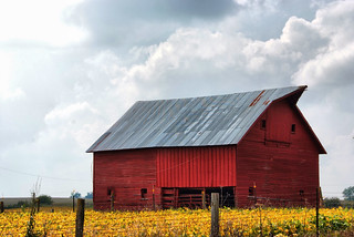Southern Story County Farm Buildings | by cwwycoff1