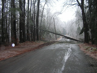 2008 Ice Storm | by naomimarr