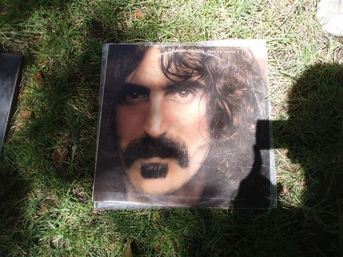 Frank Zappa What Will This Evening Bring Me This Morning