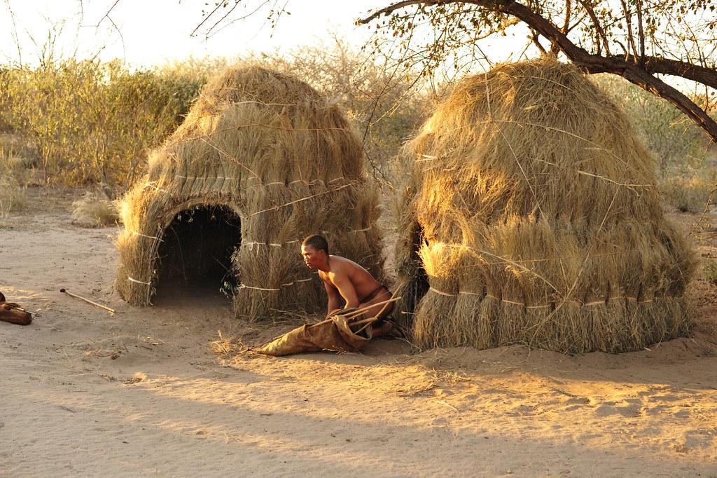 the san of the kalahari desert
