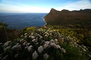 Cape Point #1, Cape Town | by 1/8 sec