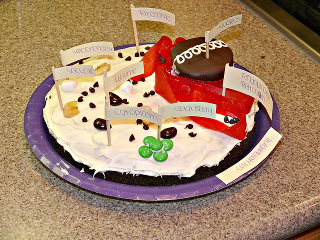 Animal Cell Cake With Candy