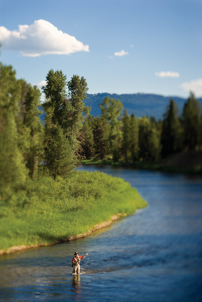 Fly fishing along the payette river flyfishing the north for Blackhawk fly fishing