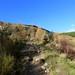 Lower Ben Ledi Path
