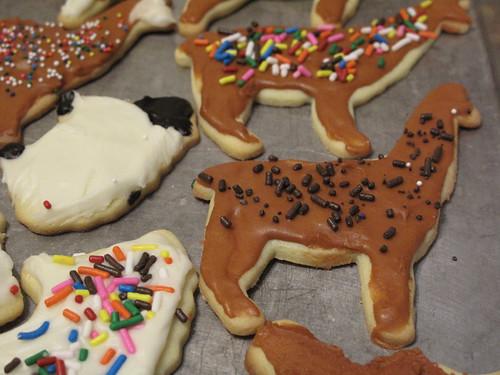 Image Result For Cookies Week Coloring
