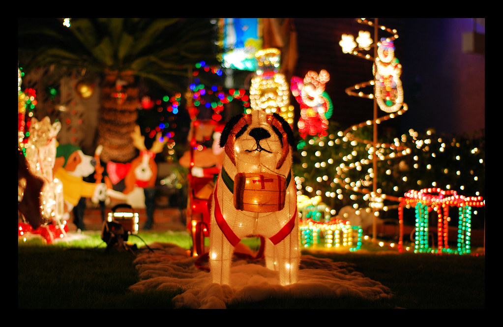 la palma christmas lights experience (5) | these are pics of… | Flickr