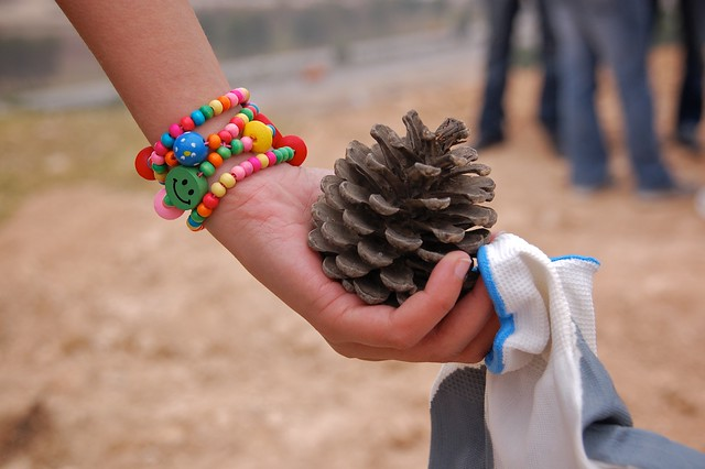 Smile pinecone gloves chris de bruyn flickr - De breuyn mobel ...