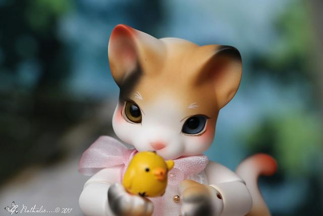 ✰ Ma famille de kitsune (p. 20) - Page 9 32792838615_56dc7c4b81_z