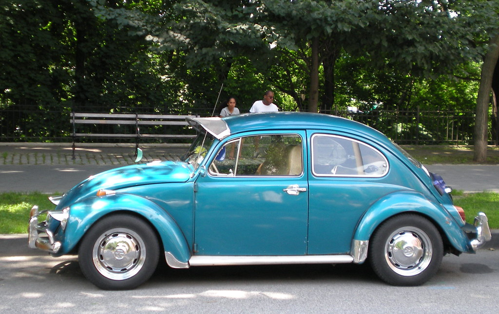 Tricked Up Beetle I Think I 39 Ve Photographed This Beetle Be Flickr