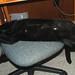 Hot Cat: Huxley