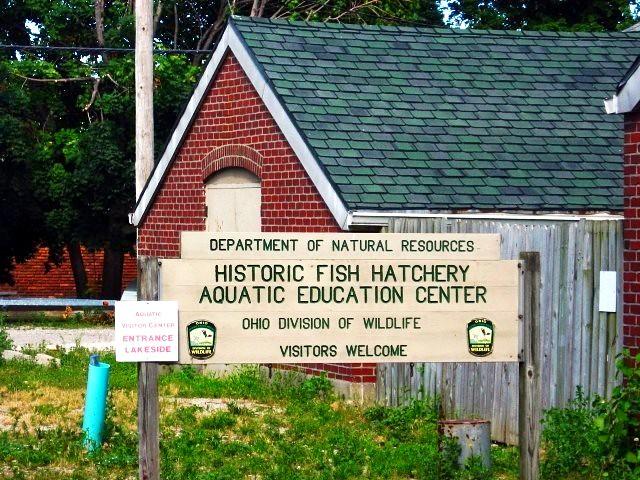 Fish hatchery aquatic education center on put in bay islan for Fish hatchery ohio