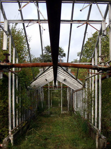 Inside the Abandoned Greenhouse | by Steffe