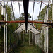Inside the Abandoned Greenhouse